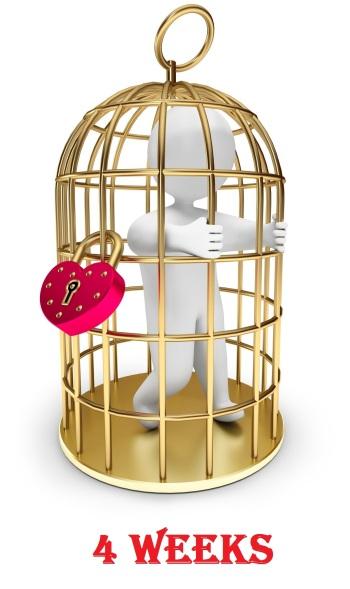 Cage-weeks04