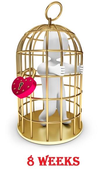 Cage-weeks08